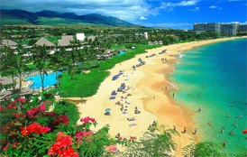 Moving to Hawaii tips