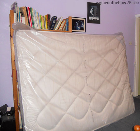 mattress bags for moving provide excellent protection against dust dirt and moisture - Mattress Bags