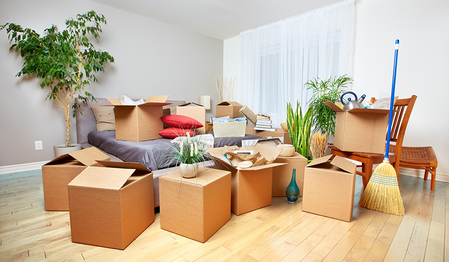 [Image: packed-for-moving.jpg]